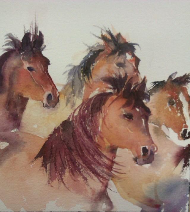 Wild horses Watercolour